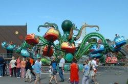 big_octopus.jpg 56k